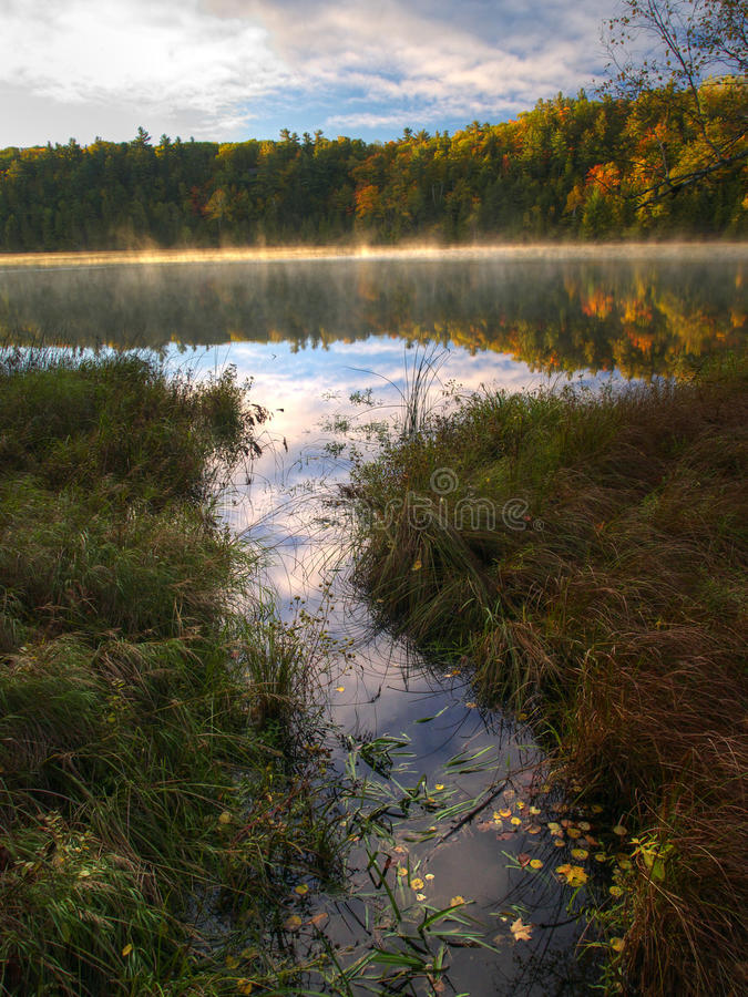 Pink lake in Gatineau Park, Quebec, Canada royalty free stock image