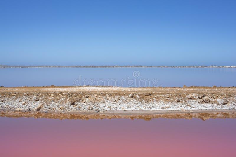 Pink lake Hut Lagoon at Port Gregory, Western Australia, Australia stock photo