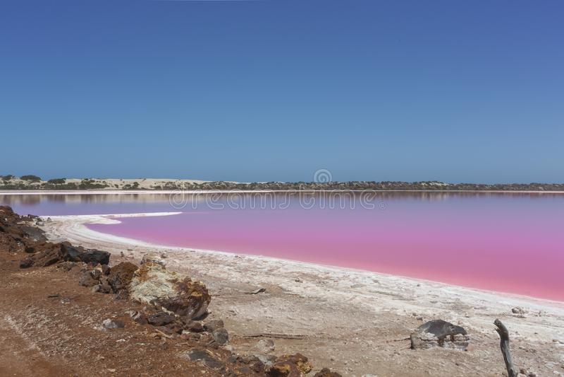 Pink lake Hut Lagoon at Port Gregory, Western Australia, Australia royalty free stock photos