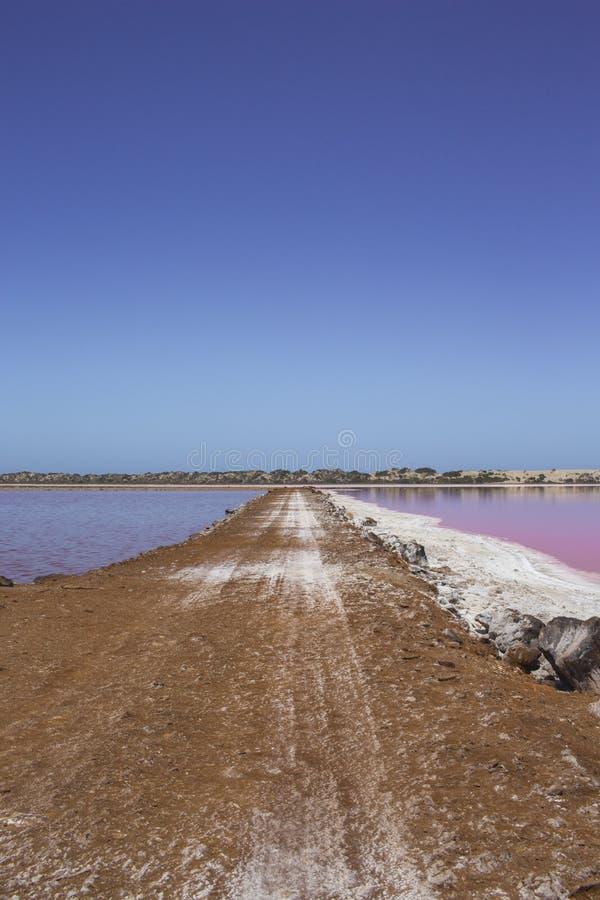 Pink lake Hut Lagoon at Port Gregory, Western Australia, Australia stock image