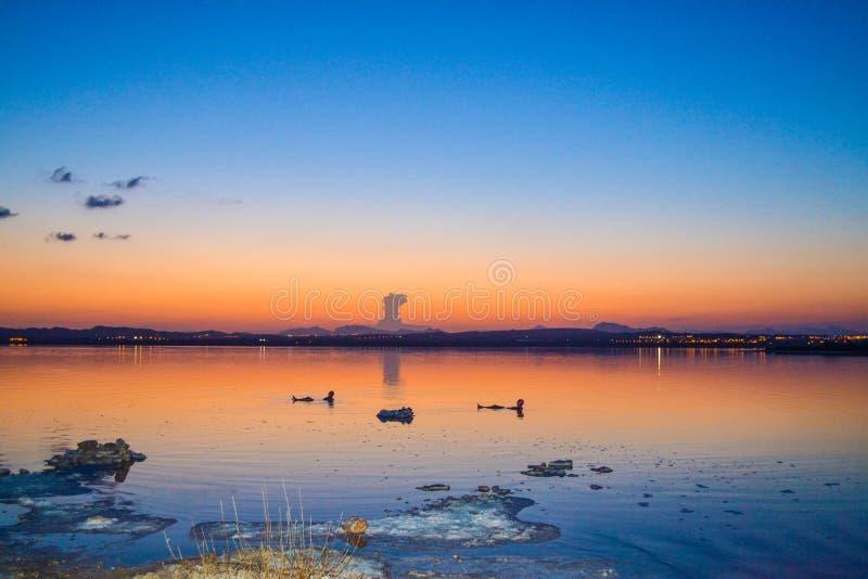 Pink Lake in Torrevieja stock image