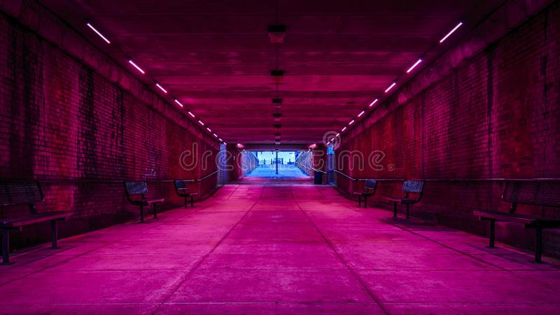 Pink lights in tunnel royalty free stock photography