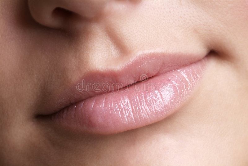 Download Pink lip stock image. Image of delicate, gorgios, madam - 4298385