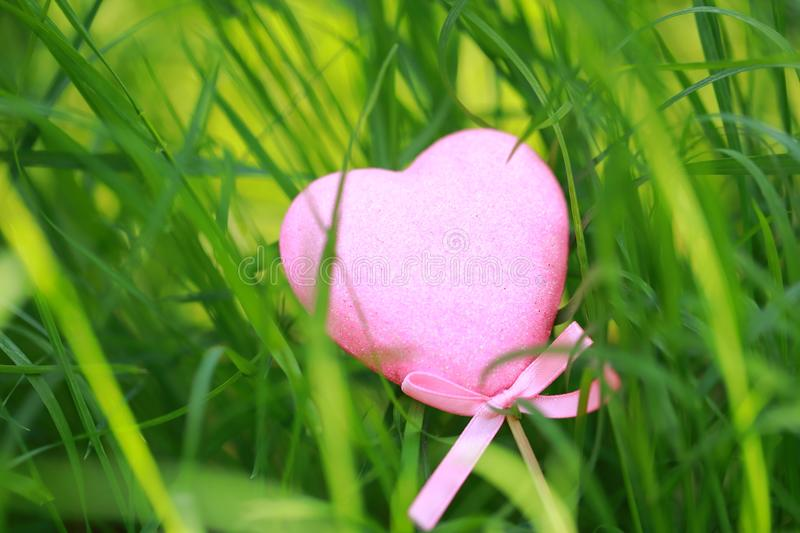 A pink love shaped foam toy gift lying on green grass lawn in summer spring autumn, close up stock image