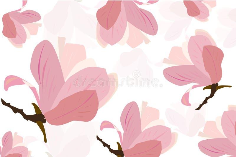 Pink magnolia flower vector background vector illustration