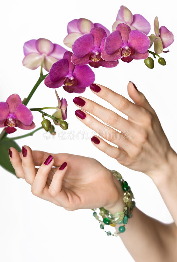 Pink manicure, orchid, green beads stock image