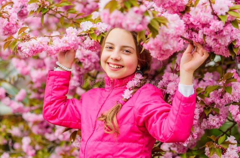 Pink is my favorite. Little girl enjoy spring. Kid on pink flowers of sakura tree background. Kid enjoying pink cherry royalty free stock images