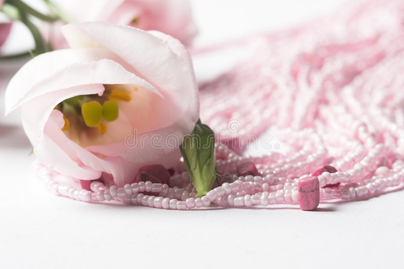 Pink necklace stock images