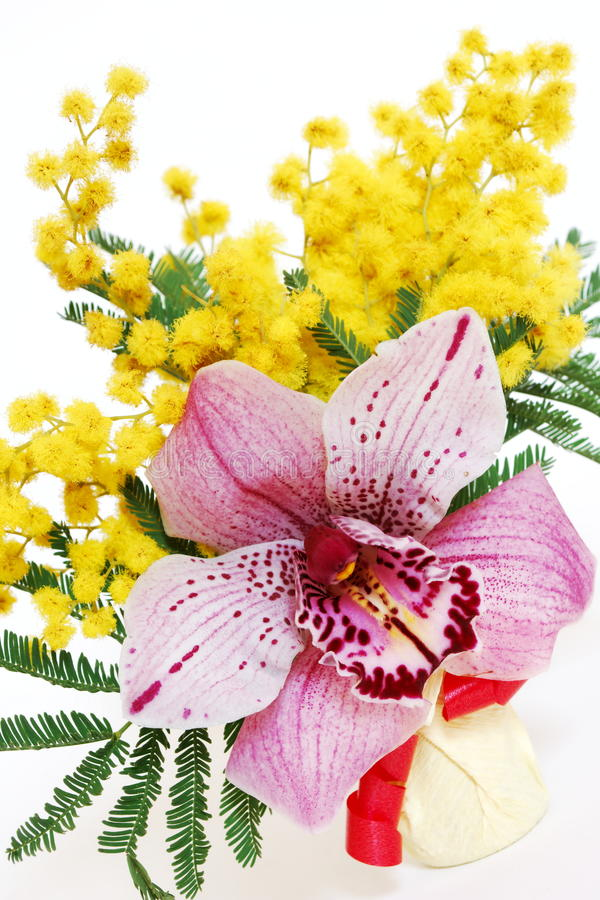 Pink orchid and mimosa bouquet stock photos