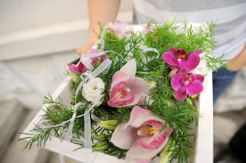 Download Pink Orchids stock image. Image of image, floral, ornate - 30498201