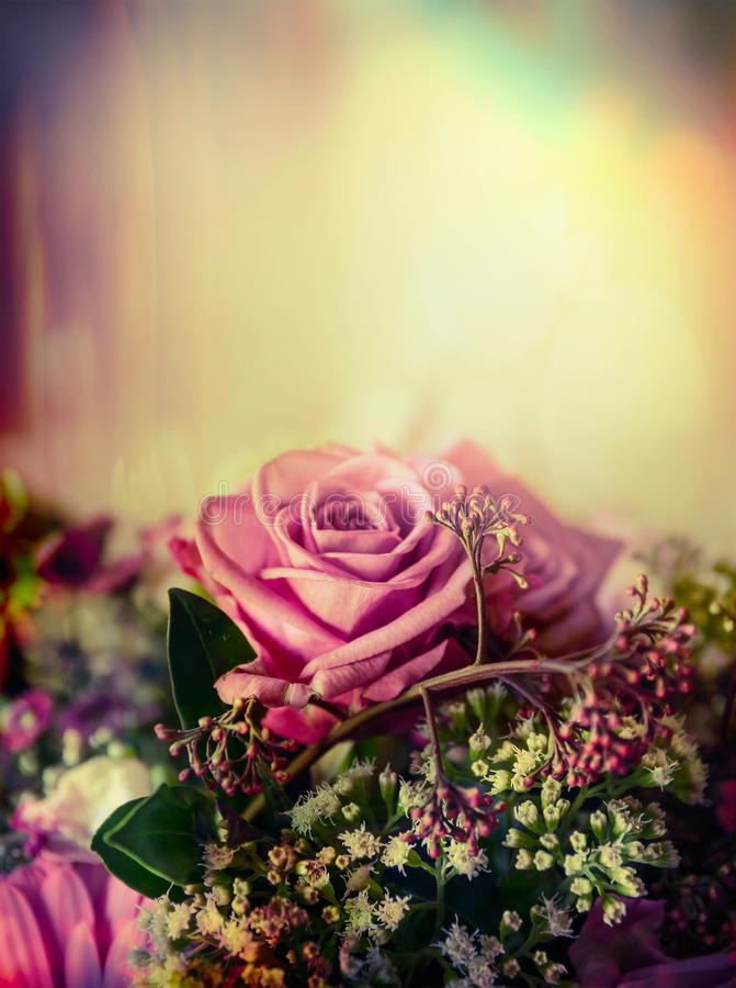 Pink pale rose bouquet on pastel background, close up. Toned stock images