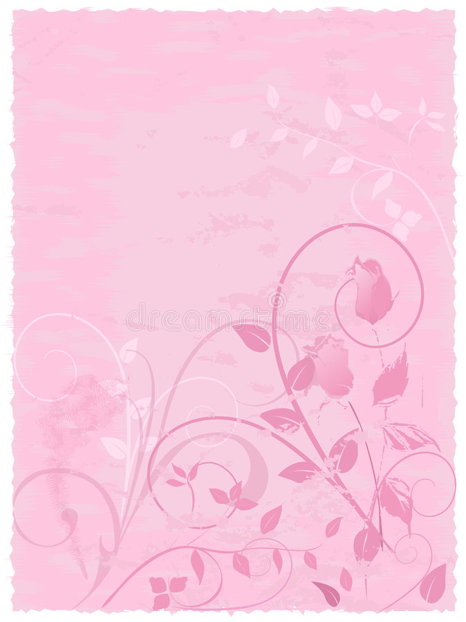 Pink Parchment Rose Design royalty free stock photography