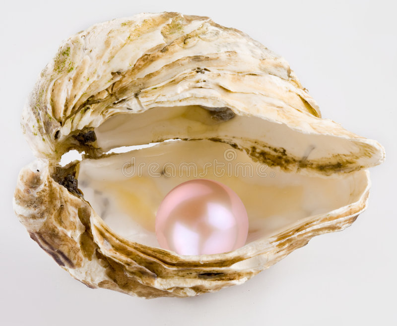 Pink pearl. Is in a shell