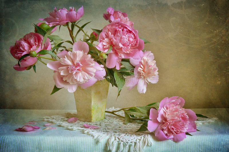Pink peonies. Still life with pink peonies stock photography