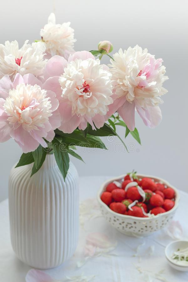 Pink peonies in a white vase and a bowl of strawberries in the background royalty free stock images