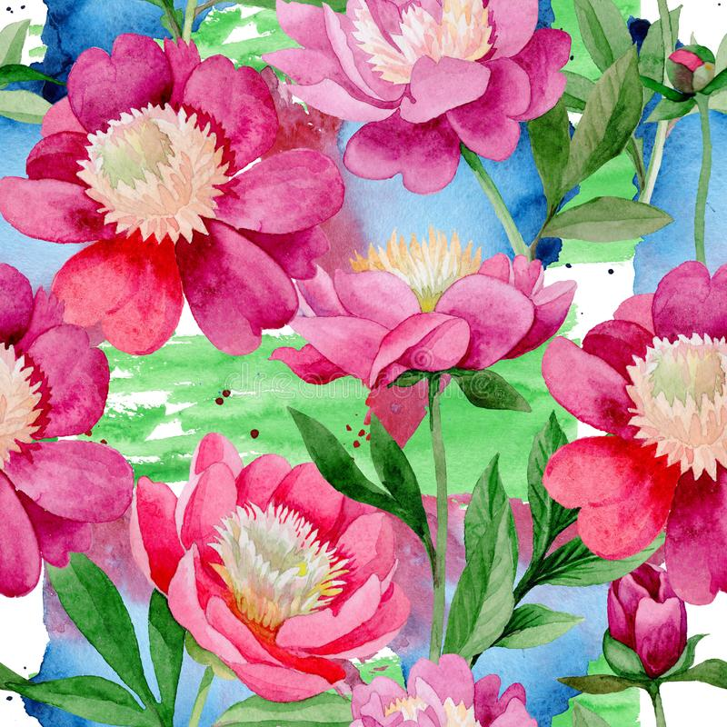 Pink peony. Floral botanical flower. Wild summer leaf wildflower pattern. stock illustration