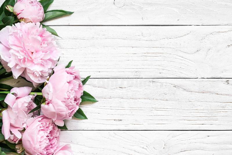 Pink peony flowers over white wooden table with copy space. wedding invitation. flat lay. Nature concept royalty free stock photos