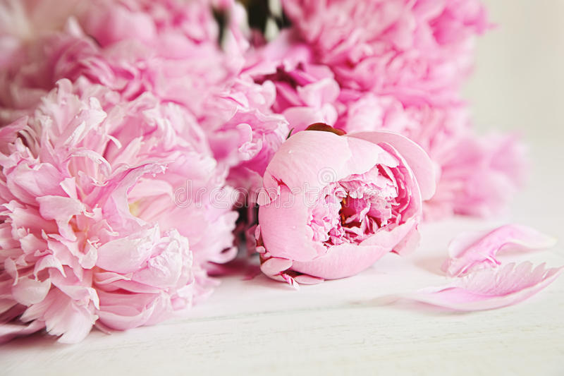 Download Pink Peony Flowers On Wood Surface Stock Photo - Image: 24271292