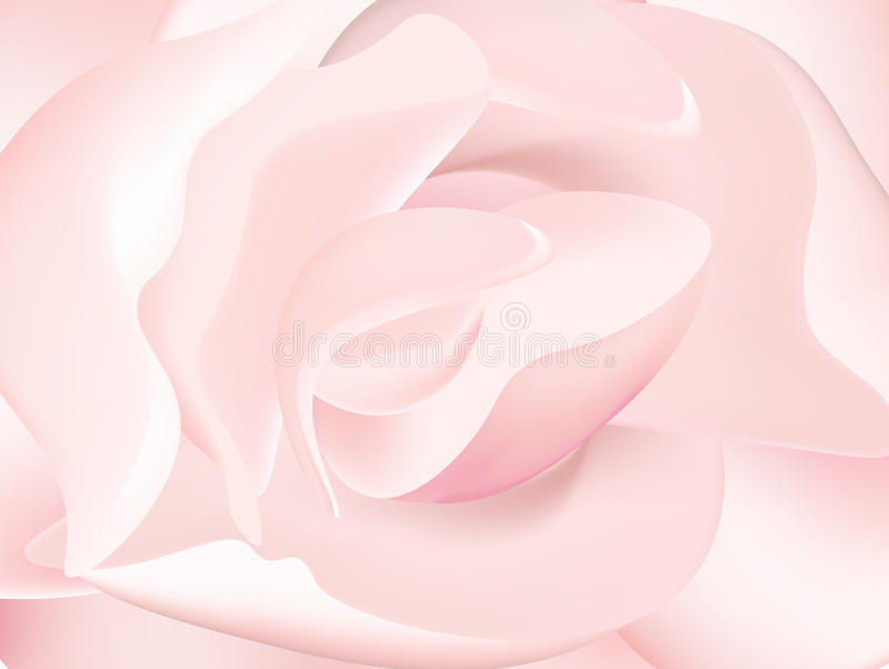 Pink peony macro stock illustration
