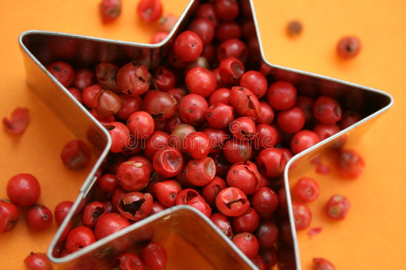 Pink Pepper royalty free stock photos