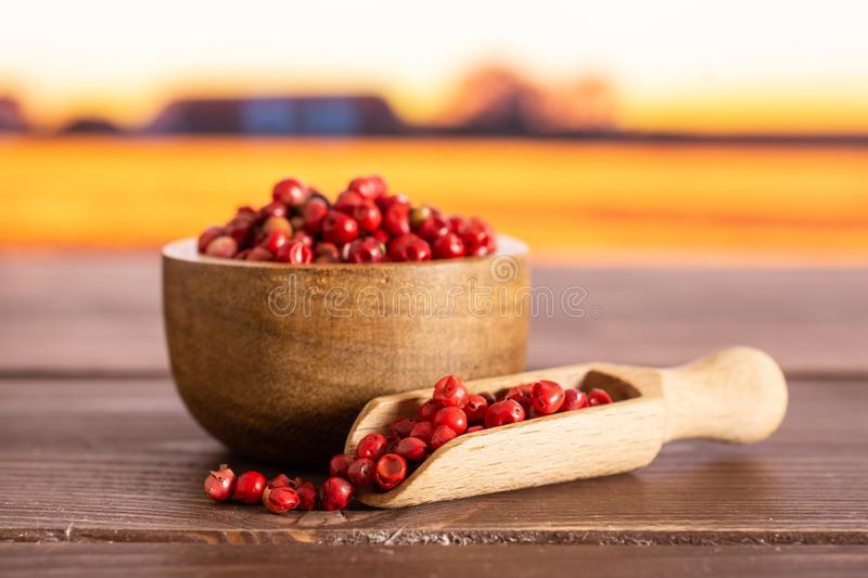 Pink peruvian pepper with autumn field behind royalty free stock photos
