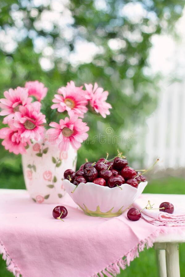 Pink Petaled Flower Beside White And Green Bowl Full Of Cherry Free Public Domain Cc0 Image