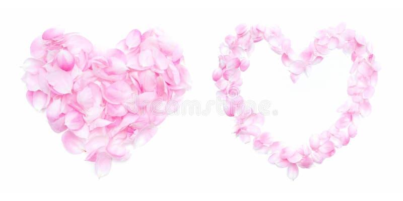 Pink petals heart stock photo