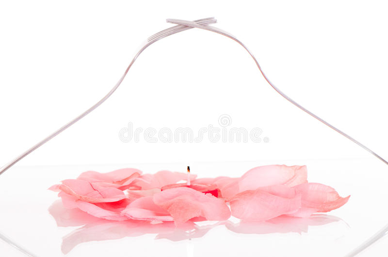 Download Pink petals in love heart stock photo. Image of reflected - 20623584