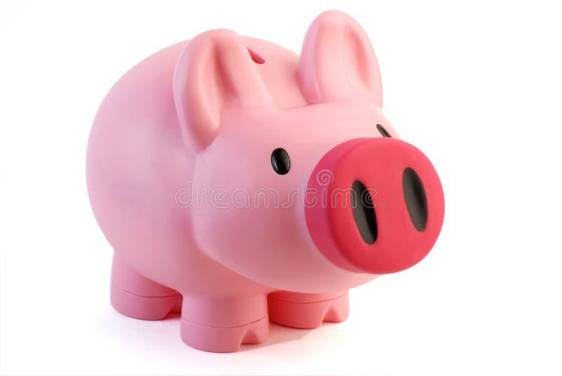 Pink pig money box stock image