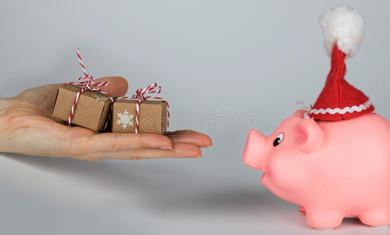 Pink piglet in a Santa Claus hat and human hand with Christmas presents in front of it royalty free stock photo