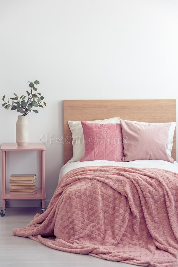 Pink pillows and cozy blanket on single bed in elegant hotel room, copy space on empty white wall stock photo