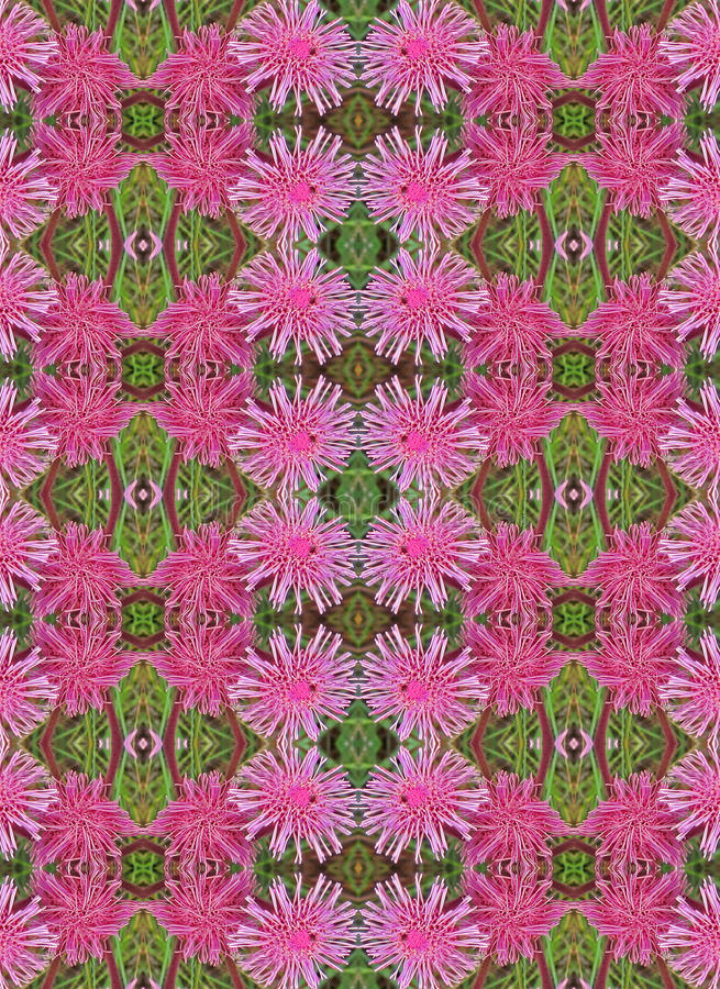 PINK POMPOM REPEAT PATTERN. Repeat pattern and duplication of pink flowers stock image