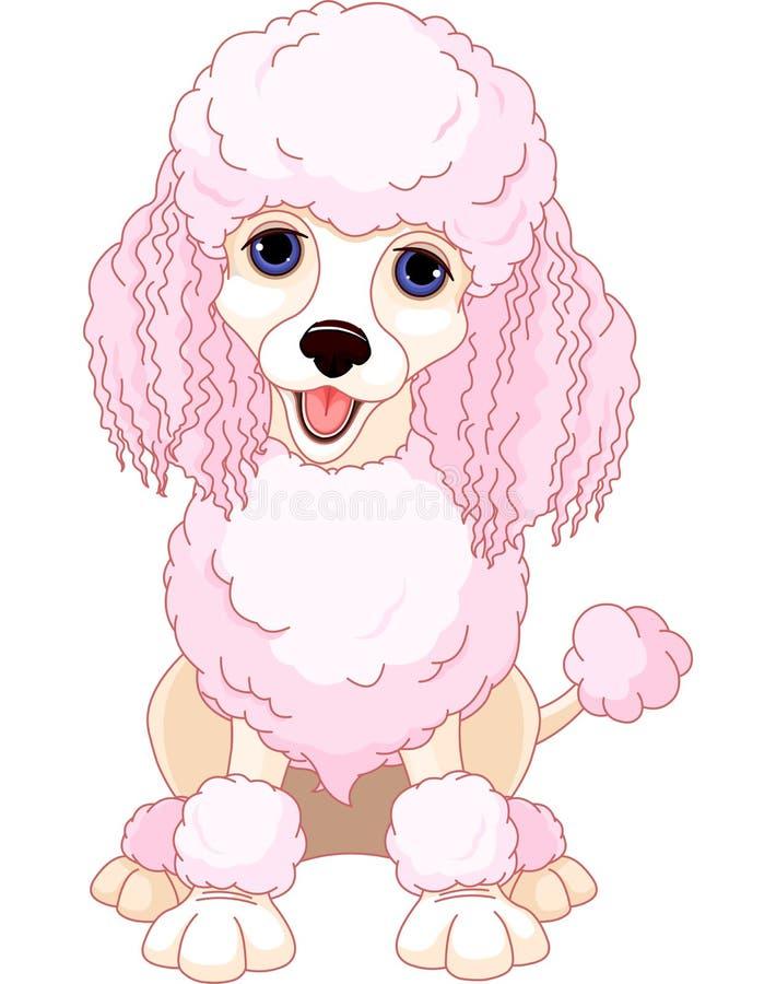 Download Pink poodle stock vector. Image of pink, elegance, image - 27174129