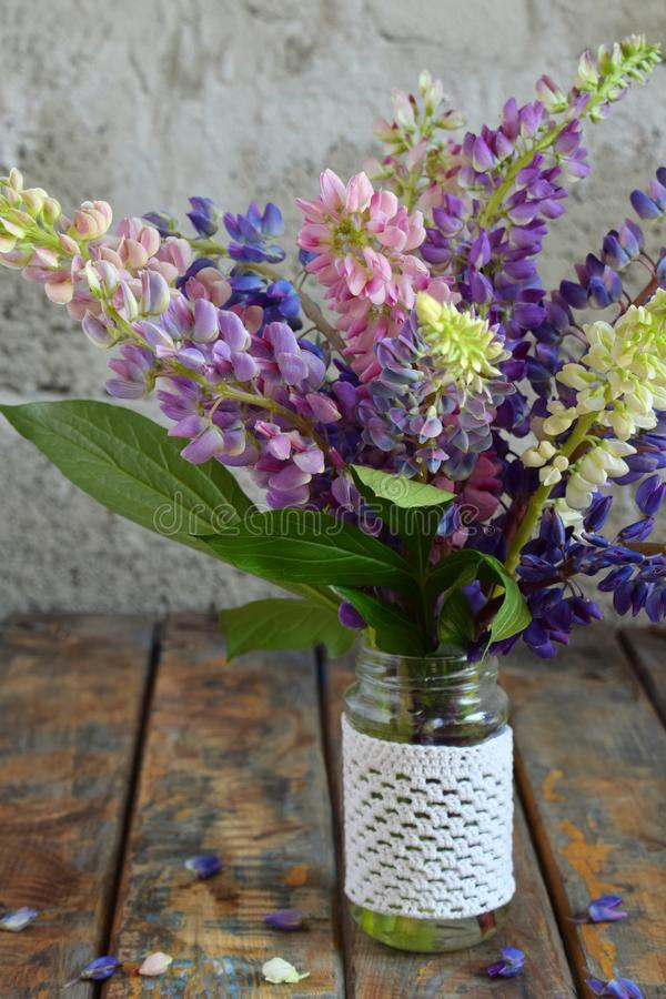 Pink, purple lupine flowers bouquet in vase. Birthday, Mother`s day, Valentine`s Day, March 8, Wedding card or invitation. Festi royalty free stock photo