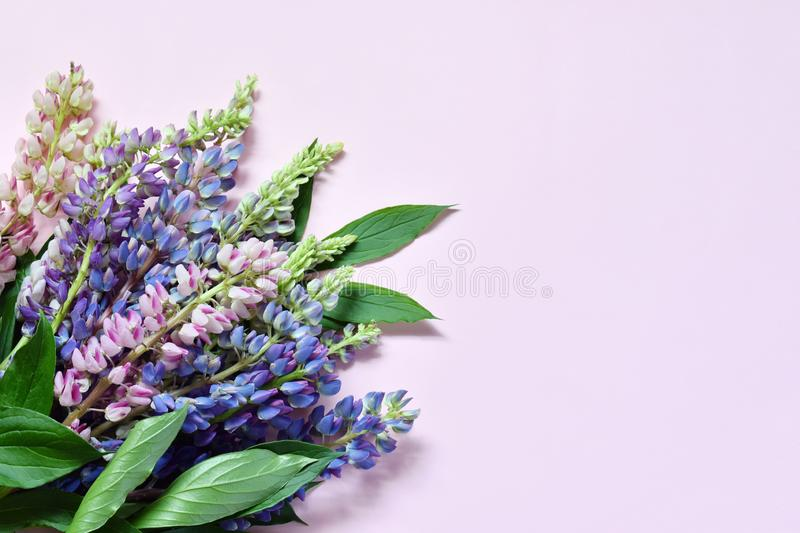 Pink and purple lupine flowers on marble background. Birthday, Mother`s day, Valentine`s Day, March 8, Wedding card or invitatio royalty free stock image