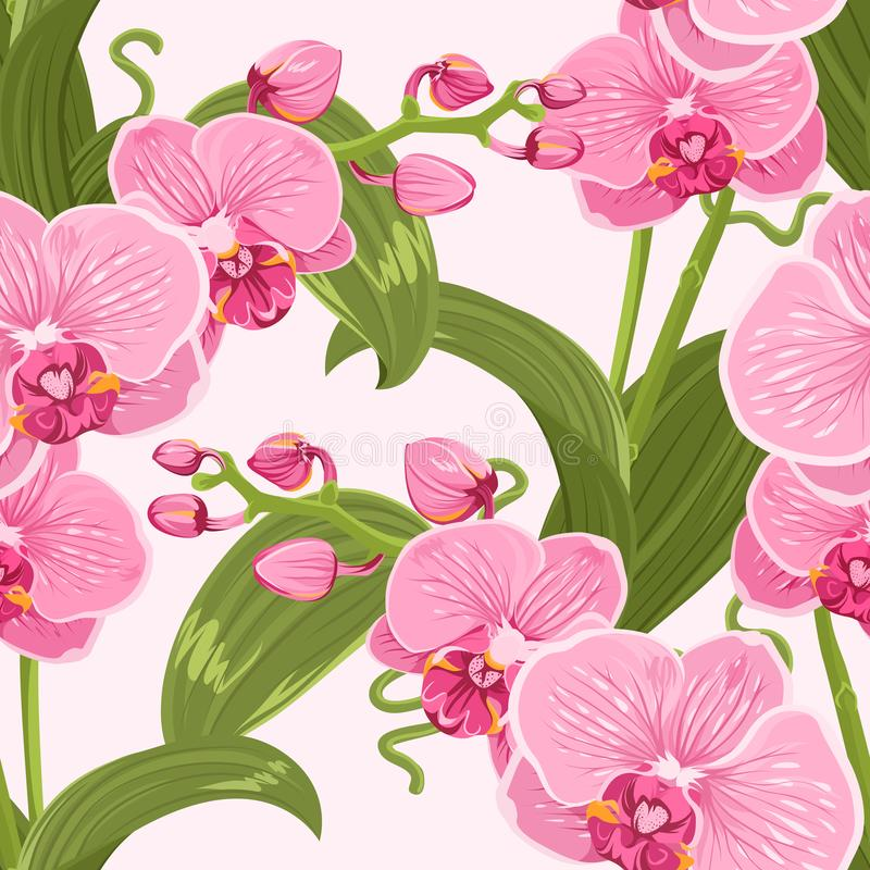 Pink purple tender orchid floral seamless pattern. vector illustration