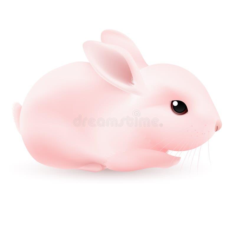 Free Pink Rabbit Royalty Free Stock Photos - 23045138