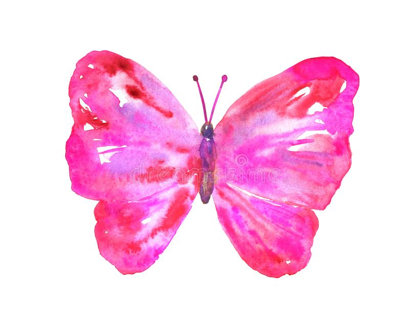 Pink red butterfly. Hand drawn watercolor illustration. Isolated on white background vector illustration