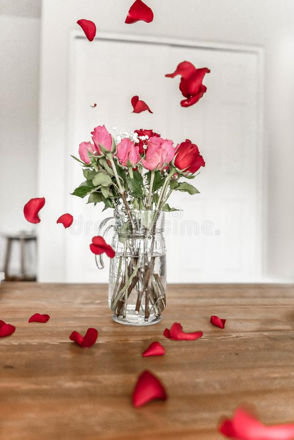 Pink and Red Roses on Clear Glass Pitcher royalty free stock photo