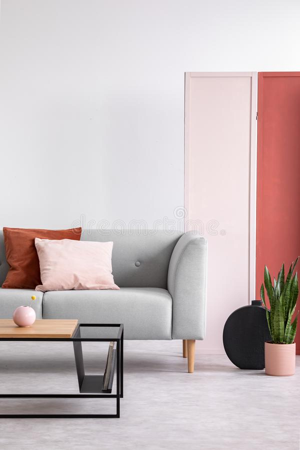 White wall of elegant living room, modern coffee table and stylish couch with pillows next to plant in. Pink and red screen on the white wall of elegant living stock photo