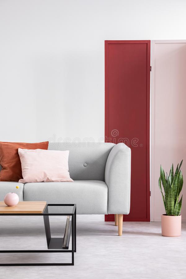 Pink and red screen on the white wall of elegant living room with modern coffee table and stylish couch, real photo. Pink and red screen on the white wall of royalty free stock photos