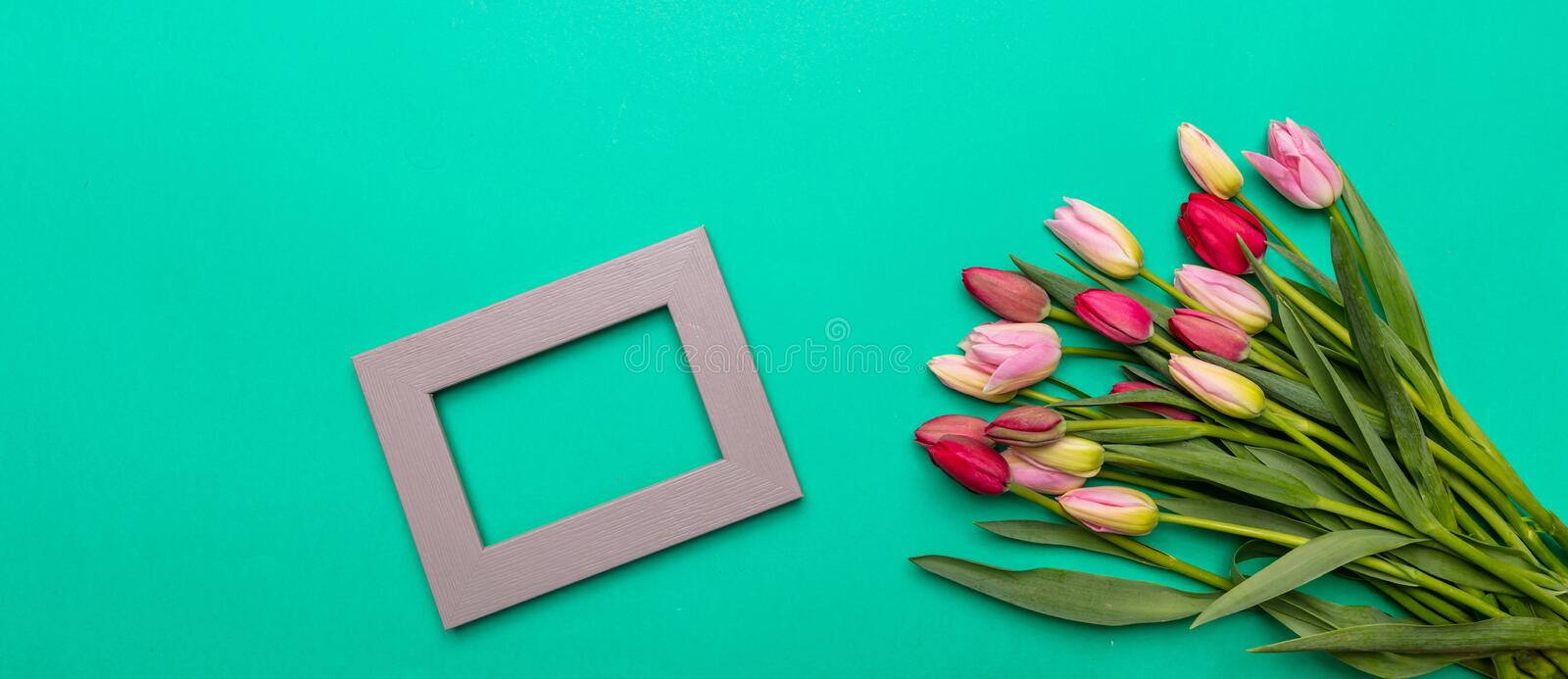 Pink and red tulips bouquet and empty frame on green background, banner, top view stock images