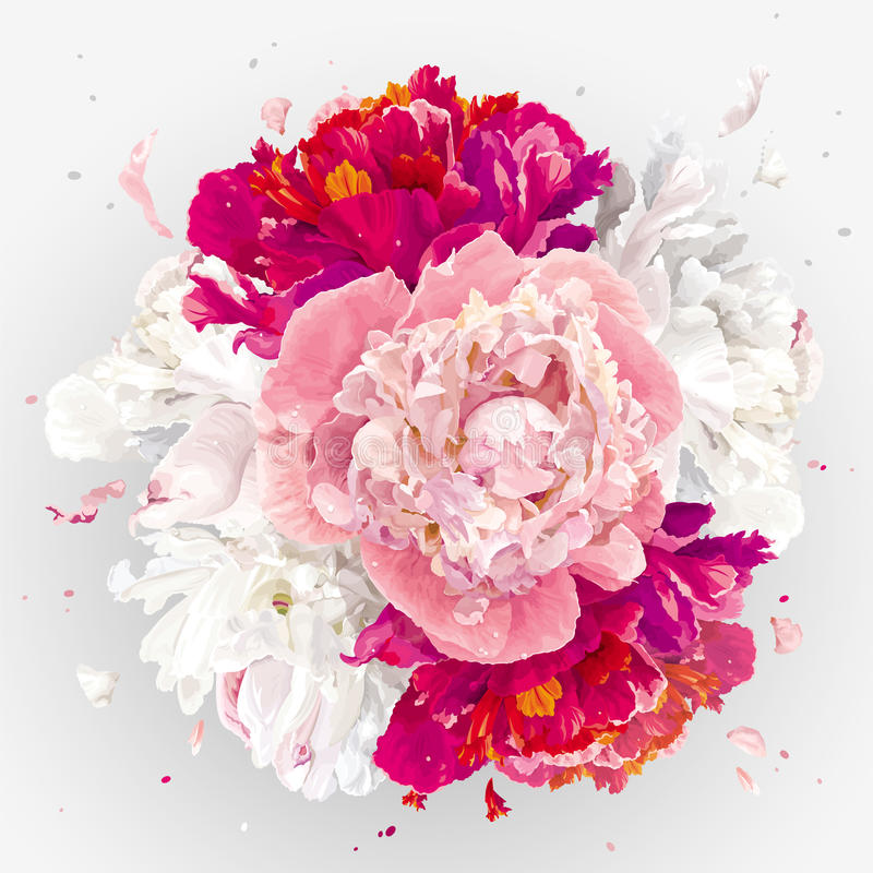 Pink, red and white peonies composition royalty free illustration