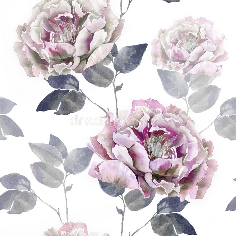 Pink retro grey flowers of peony. Seamless flower pattern. For textil or wallpaper. Floral botanical peony illustration. Watercolor flowers royalty free stock image