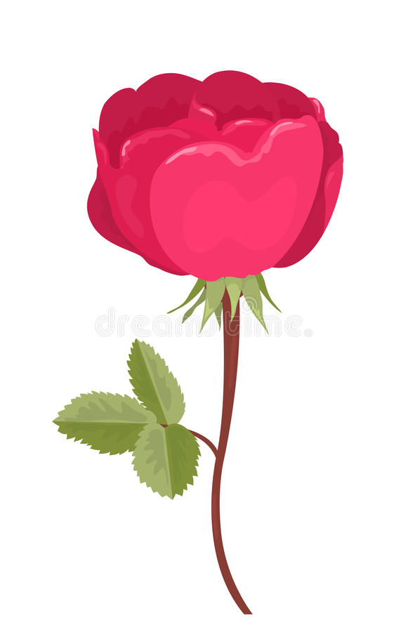 Download Pink Rose Stock Photos - Image: 29520103