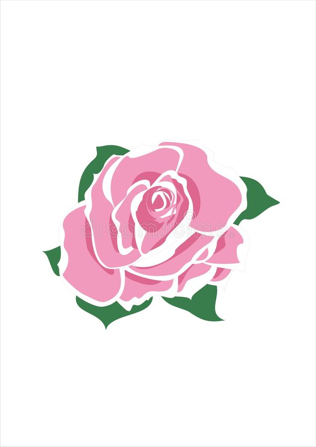 Free Pink Rose Stock Photo - 9554660