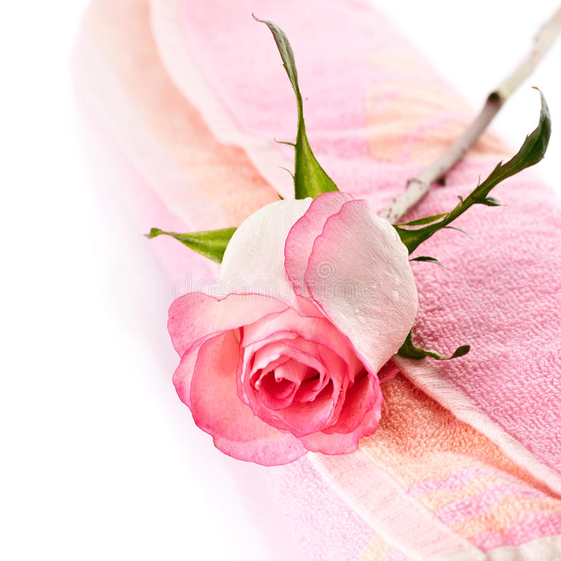 Free Pink Rose And Towel. Royalty Free Stock Image - 36054396