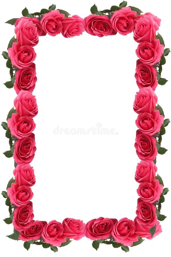Free Pink Rose Border Or Frame Stock Photos - 14004393