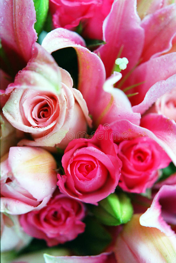Pink Rose Bouqet. And Tiger Lily stock photos