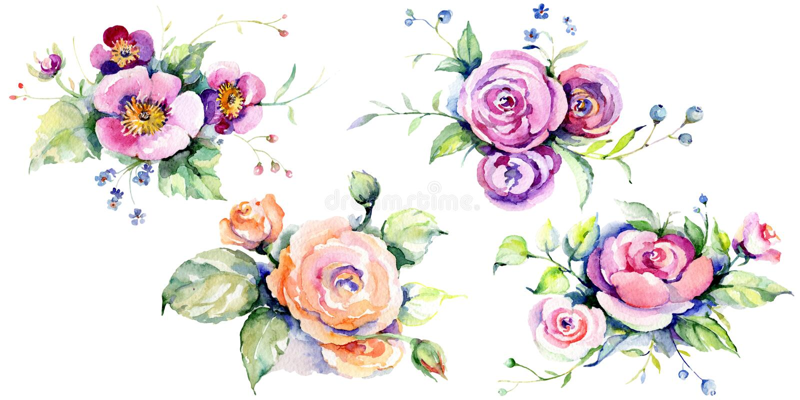 Pink rose bouquet loral botanical flowers. Watercolor background set. Isolated bouquets illustration element. Pink rose bouquet loral botanical flowers. Wild stock photos